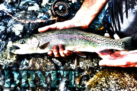 DRYFT waders trout fly fishing