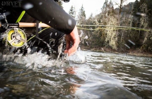 bull trout release