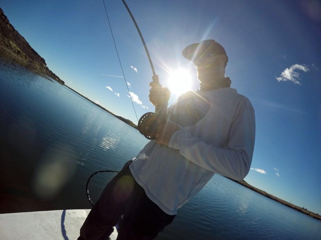 tiger musky fly fishing washngton - dryft