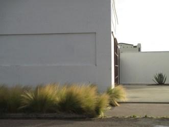 BM-Grasses_EveLight01-SML
