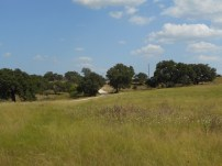 """Harper TX - 26.7"""", live oak savannah, tallgrass prairie"""