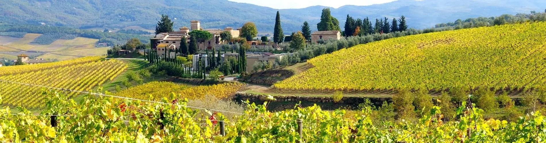 California wine region