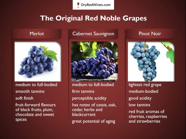 The Original Red Noble Grapes
