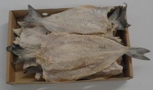 Saltfish Saithe