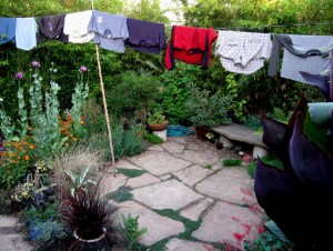 Patio with Laundry