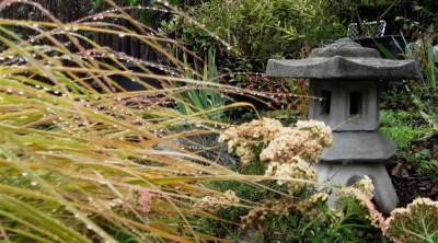 New Zealand Wind Grass and Salmon Beauty Yarrow