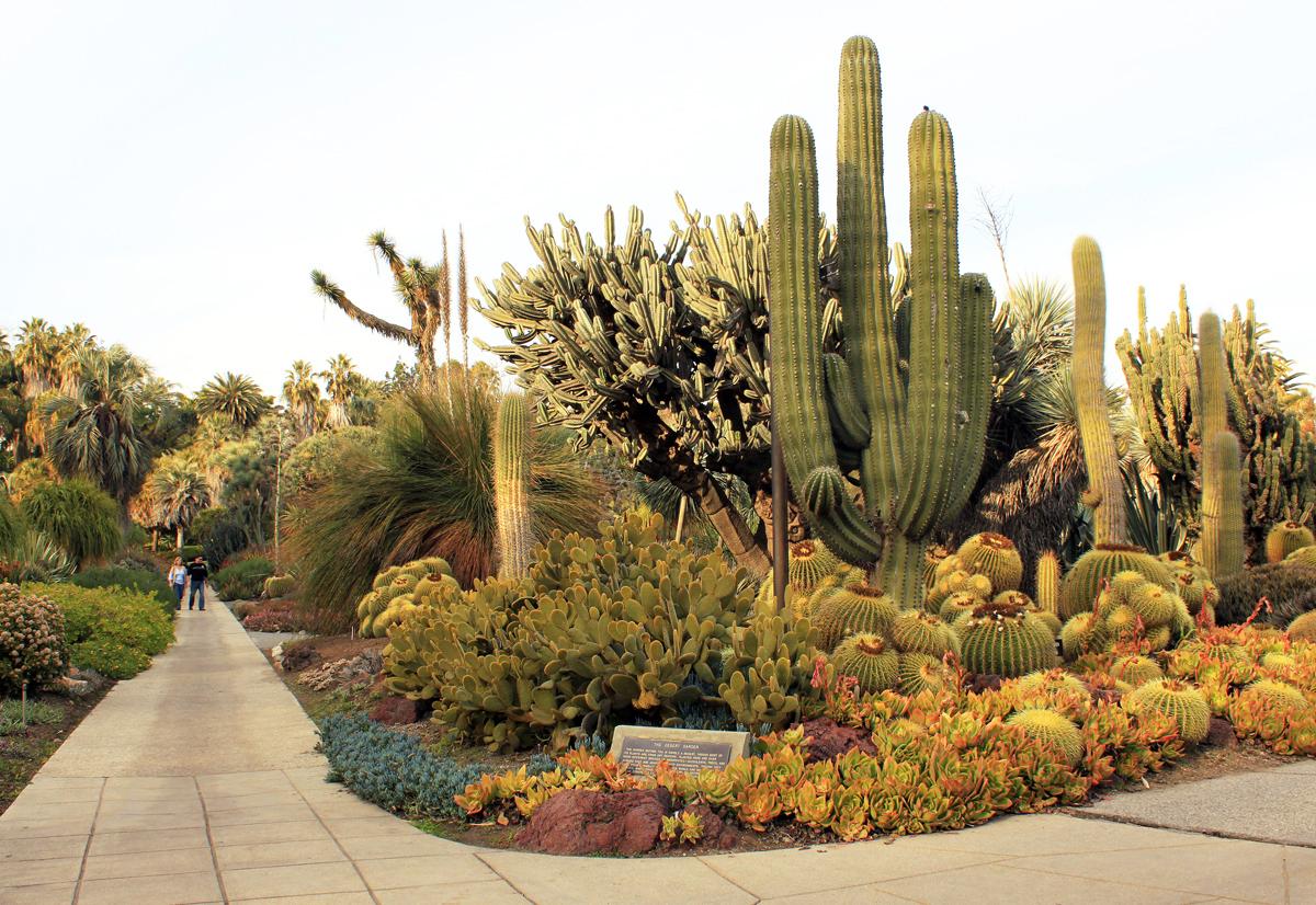 desert japanese garden DryStoneGarden » Blog Archive » The Huntington Japanese Garden