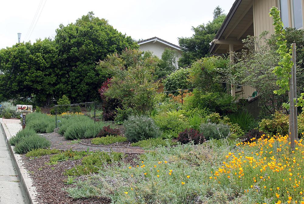 Drystonegarden private gardens for Garden conversion