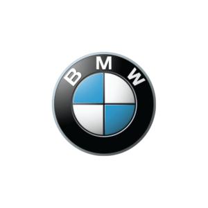 BMW's brand logo.