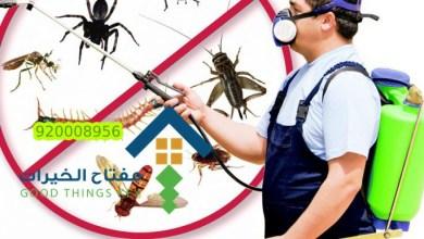 شركة رش مبيدات حشرية بالرياض