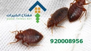 افضل شركة رش البق غرب الرياض 920008956