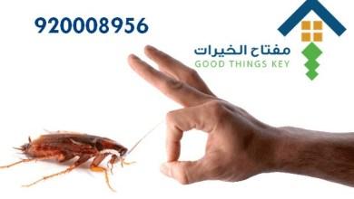 افضل شركة مكافحة الصراصير جنوب الرياض 920008956