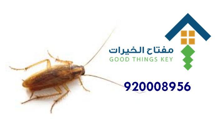 افضل شركة مكافحة الصراصير شرق الرياض 920008956