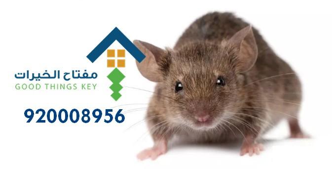 افضل شركة مكافحة الفئران شرق الرياض 920008956