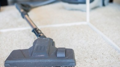 Cleaning Carpet Steam