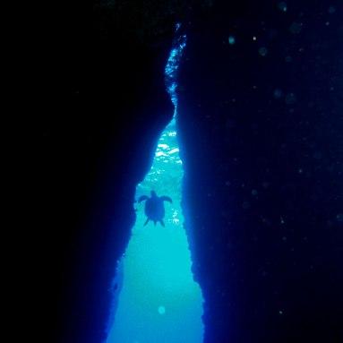 Faille du Rocher du Diamant- DSC club de plongée - club de plongée du diamant