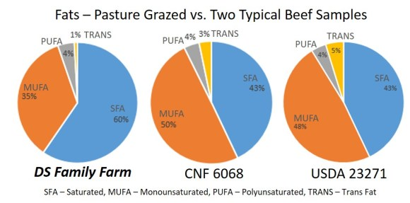 Total fats grassfed vs conventional