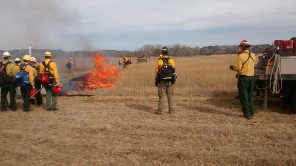 test prescribed fire