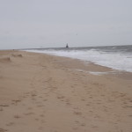 The Point, cape henlopen