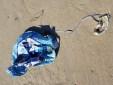 mylar balloon, delaware, sussex county, beach clean ups