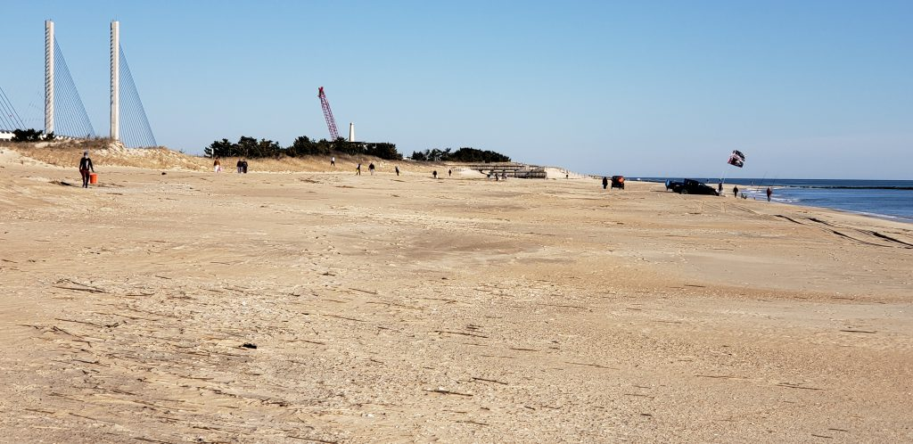 beach clean up, delaware