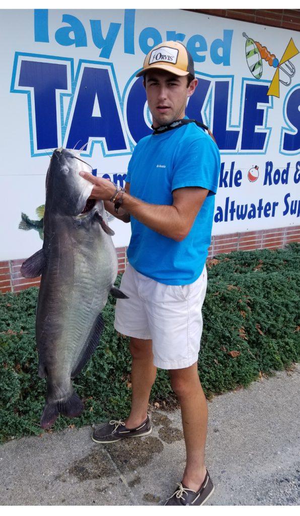 blue catfish, delaware state record, seaford, nanticoke river