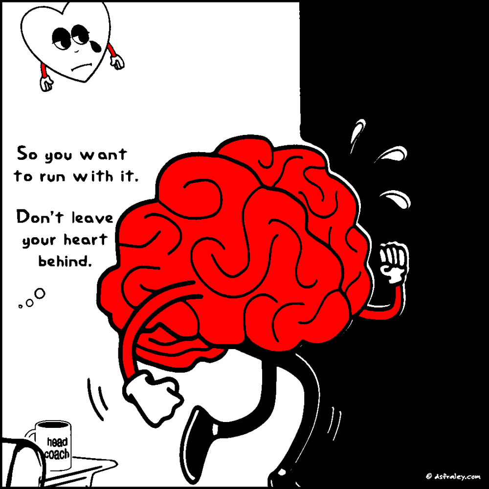 1903-norma-11-coach-brain-UP