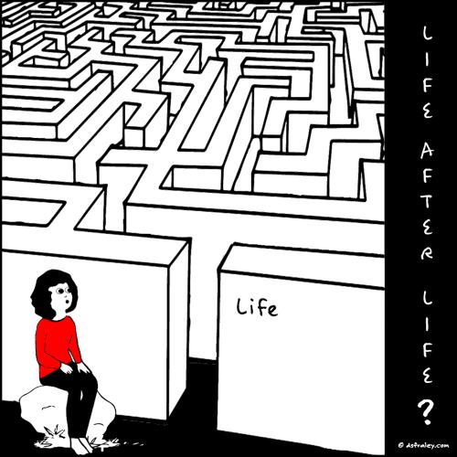 Life After Life?
