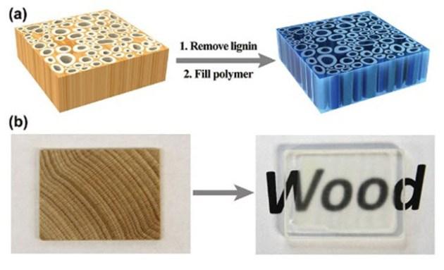 transparent-wood-1
