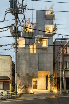 Akihisa_Hirata_-_Tree-Ness_House_-_Vincent_HECHT_MG_1029