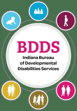 BDDS-Brochure-Art
