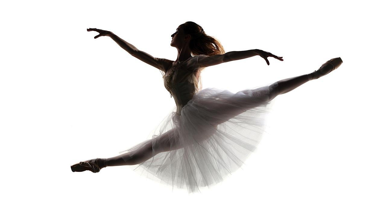 ballet lovers teespring