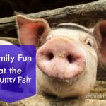Family Fun at the County Fair - dsm4kids.com