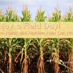 Enjoy a Field Day! Corn Mazes and Hayrides Near Des Moines - dsm4kids.com