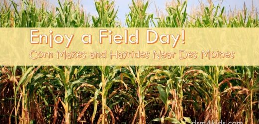 Enjoy a Field Day!  Corn Mazes and Hayrides Near Des Moines