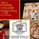 Host a Kid Friendly Cyclone Sweet Sixteen Party - dsm4kids.com
