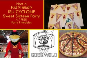 Host a Kid Friendly Cyclone Sweet Sixteen Party - dsm4kids.com