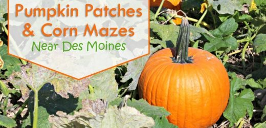 2016 Pumpkin Patches & Corn Mazes Near Des Moines