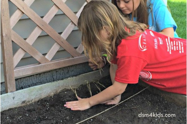 Plan a Family Garden with Your Kids – dsm4kids.com