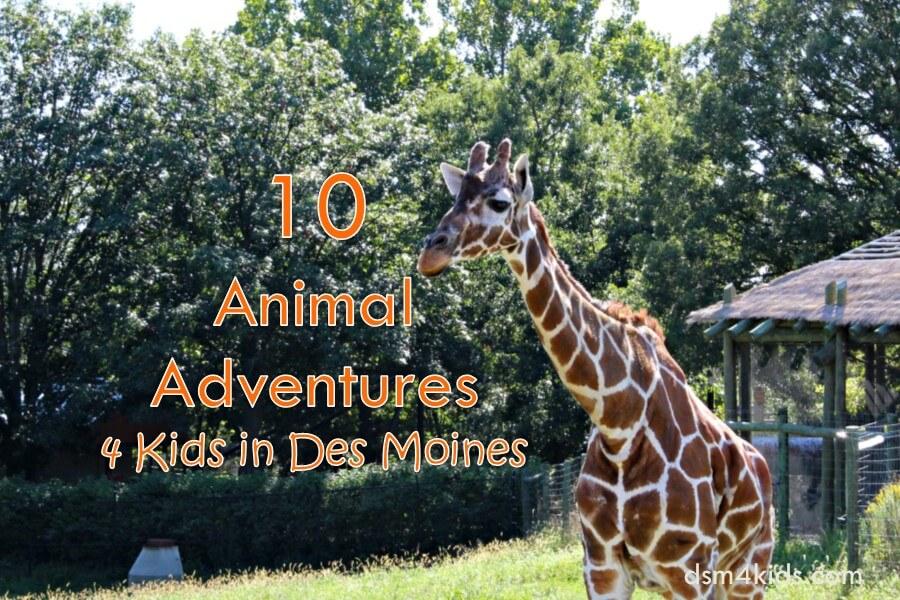 10 Animal Adventures 4 Kids in Des Moines