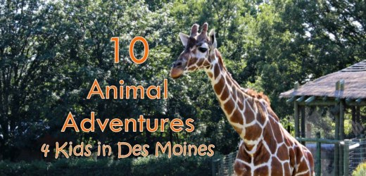 10 Animal Adventures 4 Kids in Des Moines