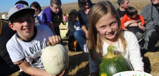 2018 Pumpkin Patches, Corn Mazes & Fall Fun Near Des Moines