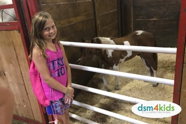 5 Reasons You Don't Want to Miss the Iowa State Fair – dsm4kids.com