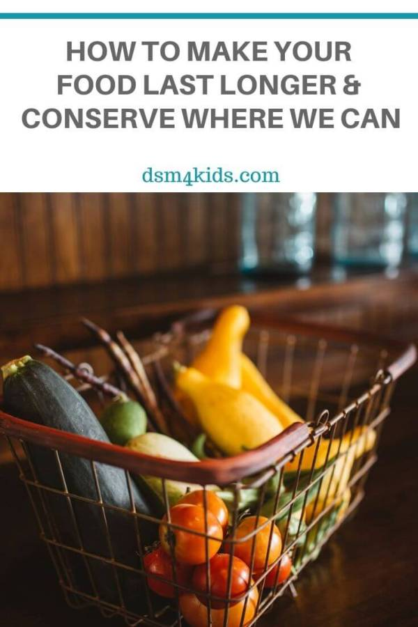 How to Make Your Food Last Longer and Conserve Where We Can – dsm4kids.com