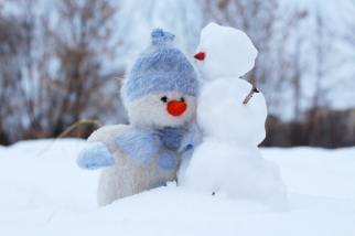 christmas-cold-friends-frosty-269370.jpg