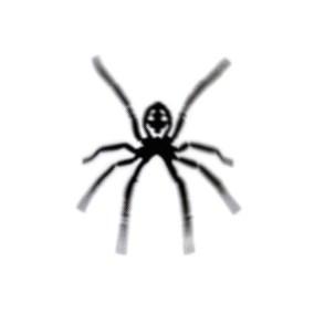 King Spider logo