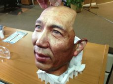 3d-printing-news-july-18-2013-face