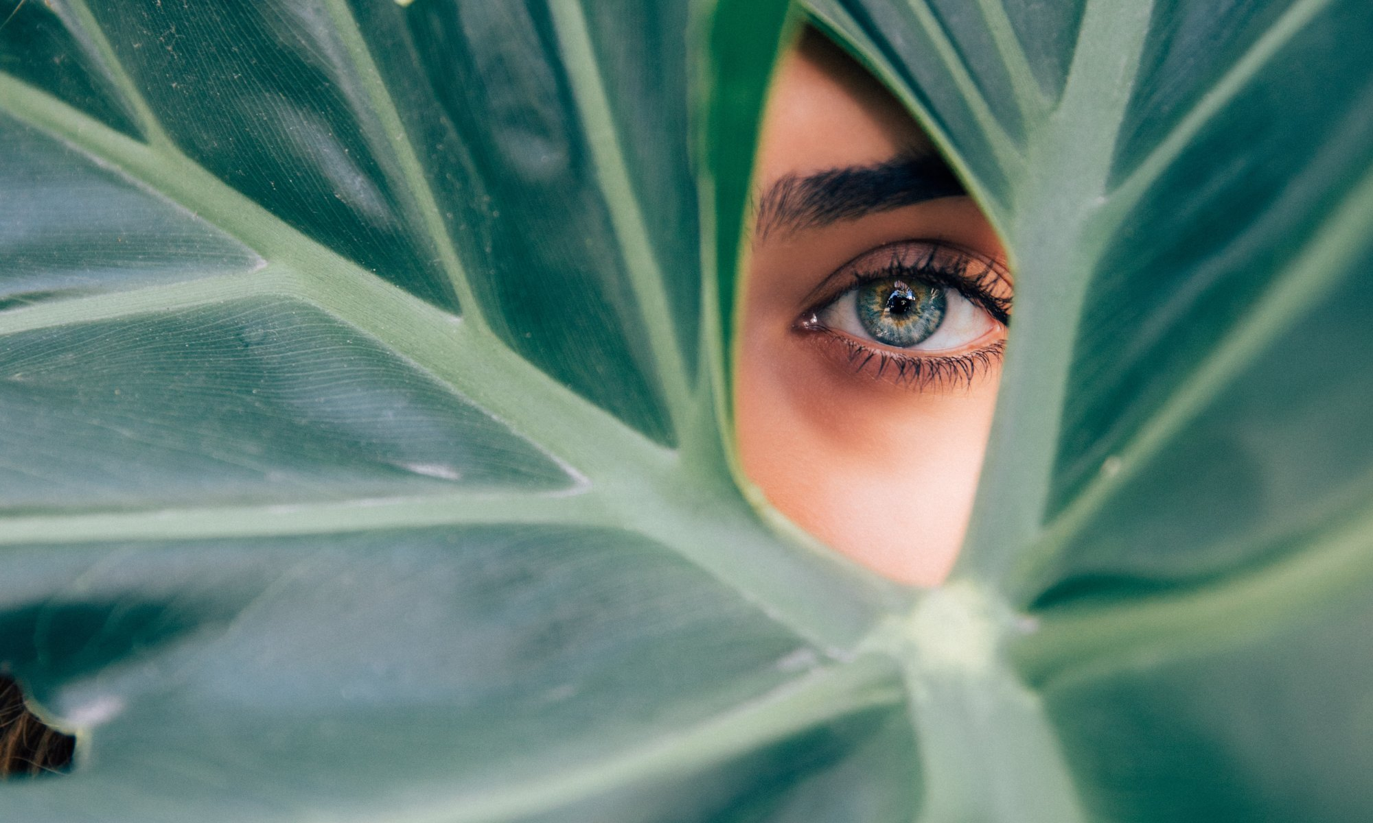 woman with green eye peaking through green plants