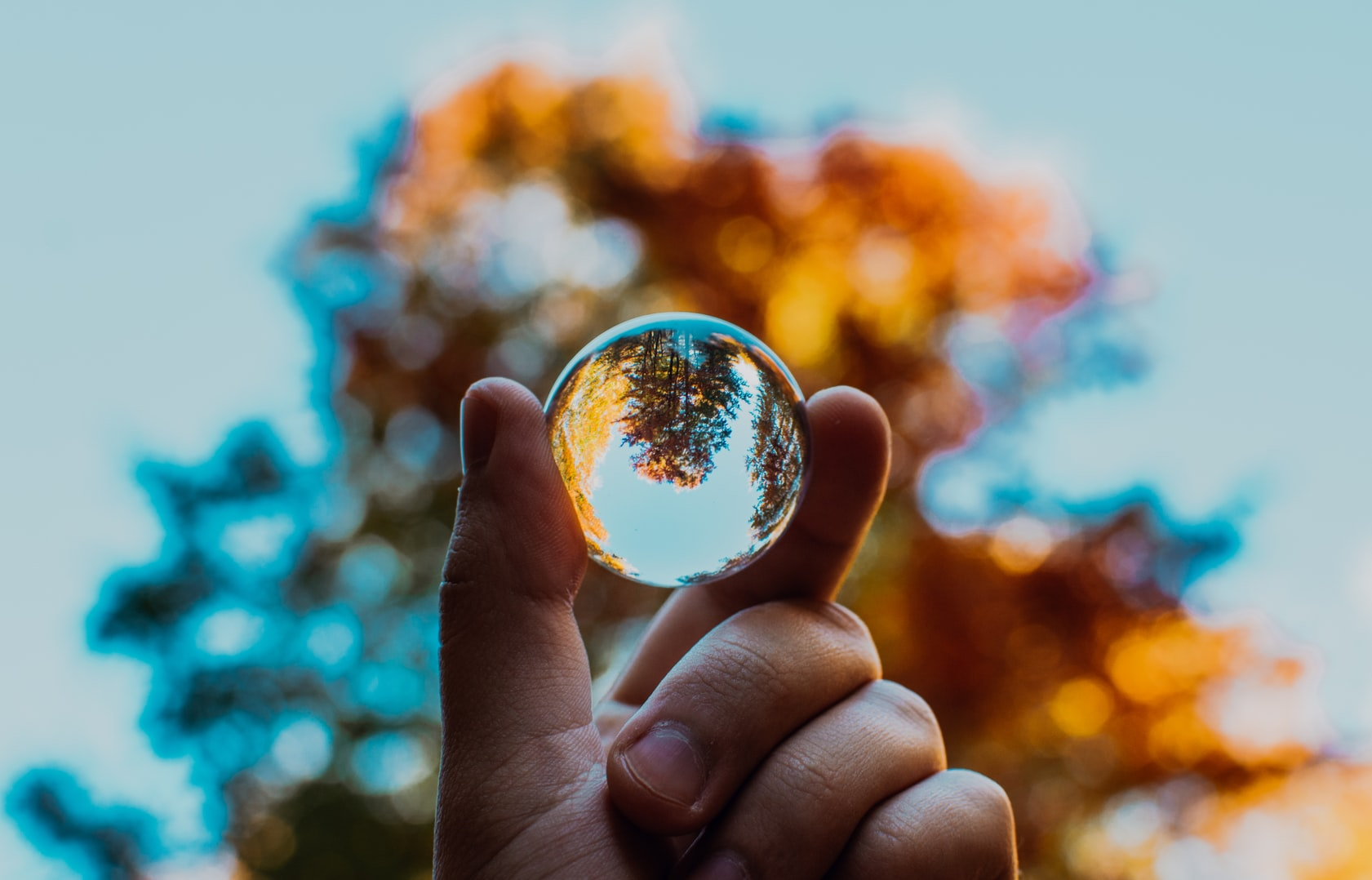 Selective focus photography of hand holding crystal ball