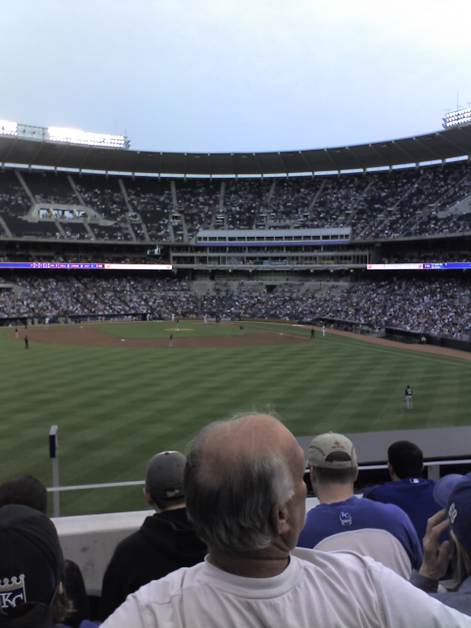 View from the $7 seats